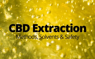 CBD Extraction Methods (Updated For 2020)